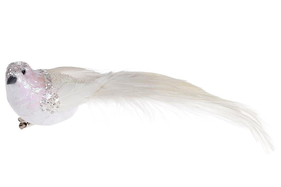 Декоративная птица